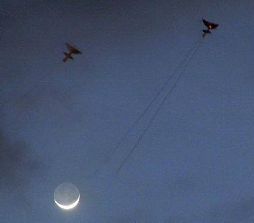 Thai rice farmers fly their Aeg kites at night.