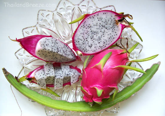 Cut and uncut white dragon fruits with a cactus stem.