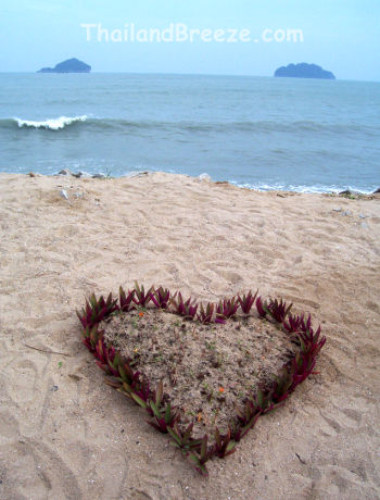 A unique heart-shaped garden by the beach in Thailand.