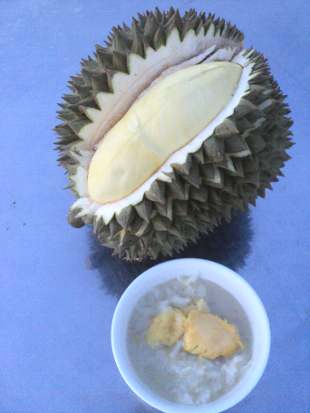Sticky rice with durian is a delicious Thai dessert