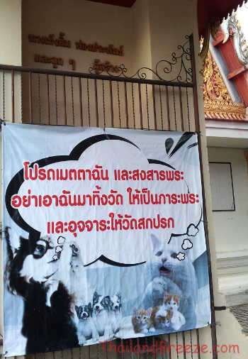 This poster asks people not to abandon dogs at Buddhist temples in Thailand.